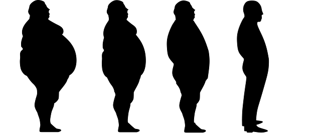 lose-weight-1911605_640.png